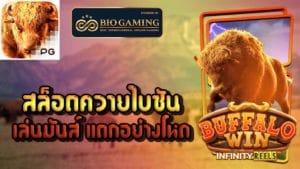 buffalo win-biogame